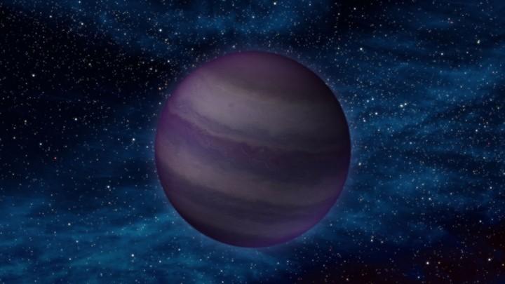 Mahabarata stella bruna